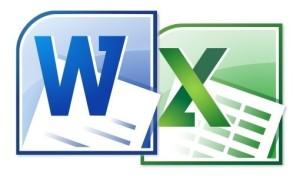 WordExcel